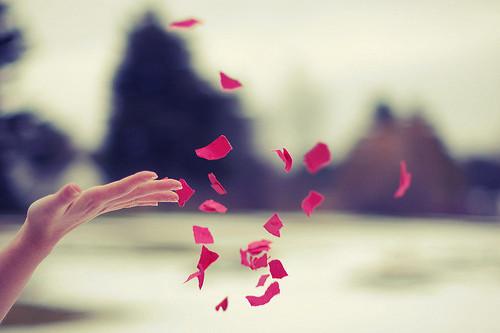 Mano abierta soltando pétalos de rosa.
